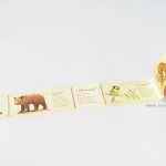 Animal encyclopedia washi paper tape by mt